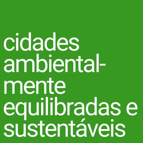cidades inclusivas e sem discriminação (8)